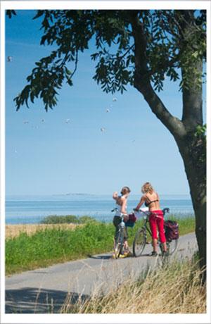 Cykelture og Bornholm hører uløseligt sammen