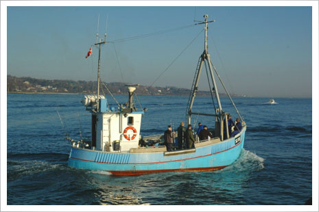 Bornholm er et mekka for lystfiskere