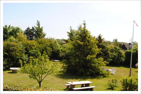 Den store have, som Møllehuset deler med nabohuset