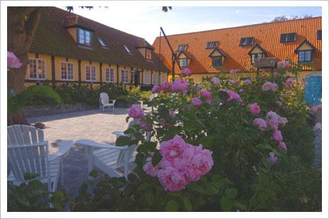 Gårdhaven ved Hotel Siemsens Gaard. Skønne hyggestunder venter jer