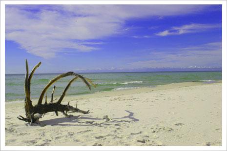 Det fine sand på Dueodde har været brugt tl timeglas